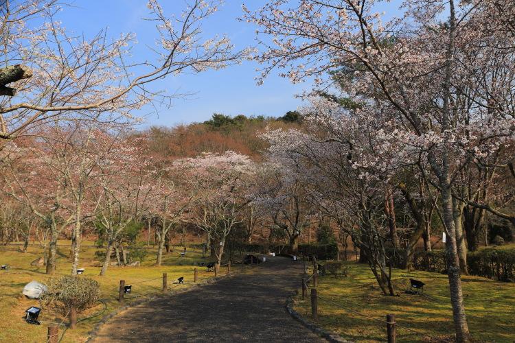 国立京都国際会館_e0051888_23431570.jpg