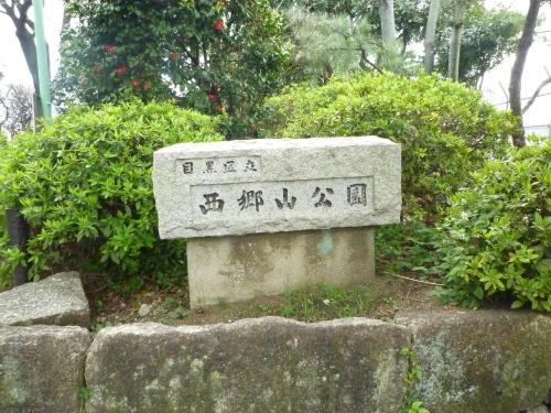 ポタリング 目黒川の花見_a0262093_11533108.jpg
