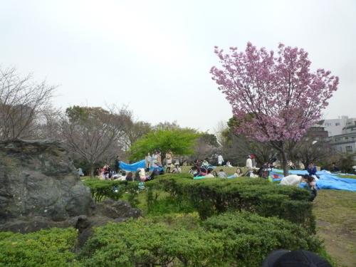 ポタリング 目黒川の花見_a0262093_11561615.jpg