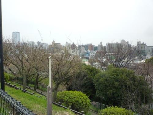 ポタリング 目黒川の花見_a0262093_12021151.jpg