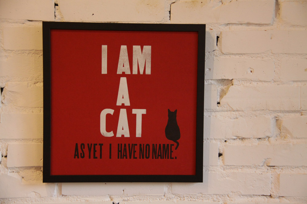 I am a cat, as yet I have no name._e0228408_19293827.jpg