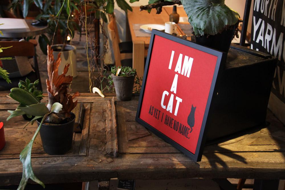 I am a cat, as yet I have no name._e0228408_19343584.jpg