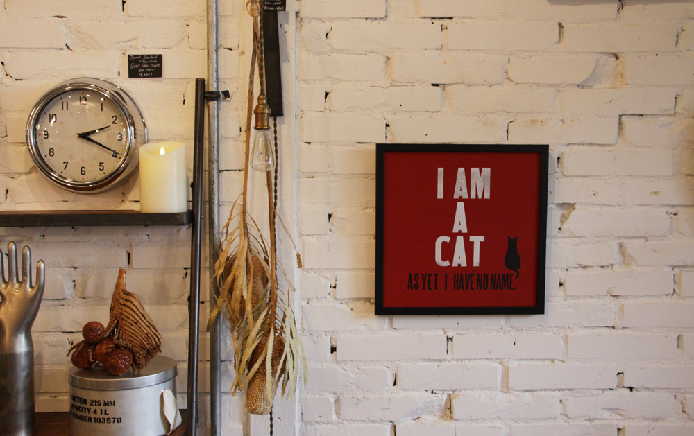 I am a cat, as yet I have no name._e0228408_1934866.jpg