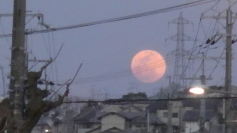 UNO 3/23(水) at COSPA御殿山_a0059812_9551266.jpg