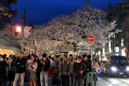 2016桜だより27 高瀬川夜桜_e0048413_1651062.jpg