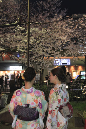 2016桜だより27 高瀬川夜桜_e0048413_16521858.jpg