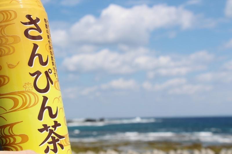 島へ、お茶旅3_b0220318_17350254.jpg