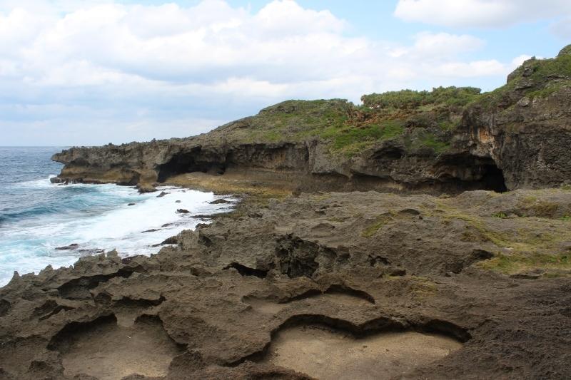 島へ、お茶旅3_b0220318_17413918.jpg