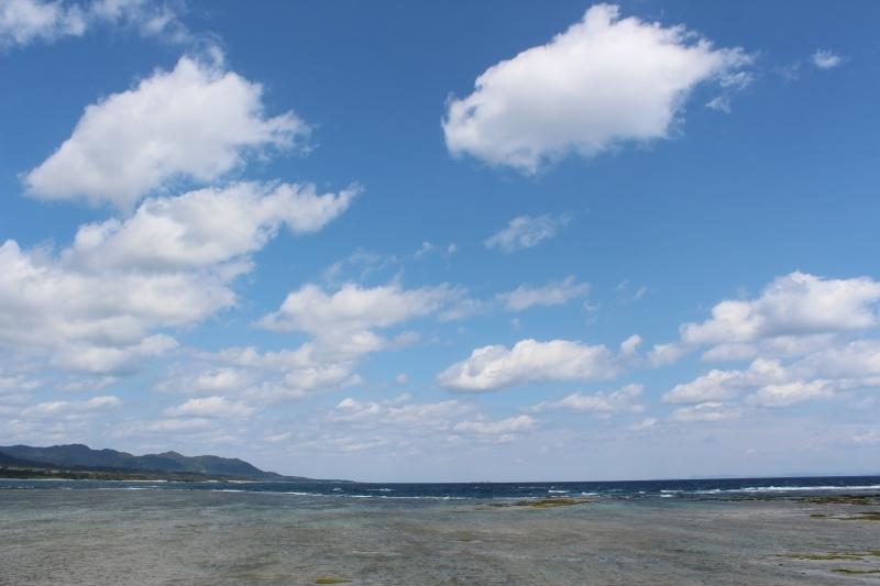 島へ、お茶旅3_b0220318_18134570.jpg