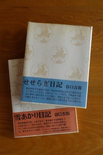 「雪あかり日記」と「せせらぎ日記」_c0070136_11395264.jpg