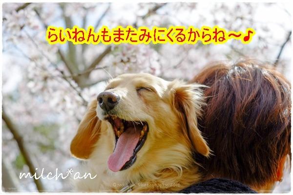 b0115642_16324738.jpg