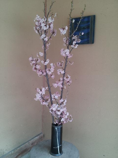 春到来♪_f0244543_21114537.jpg