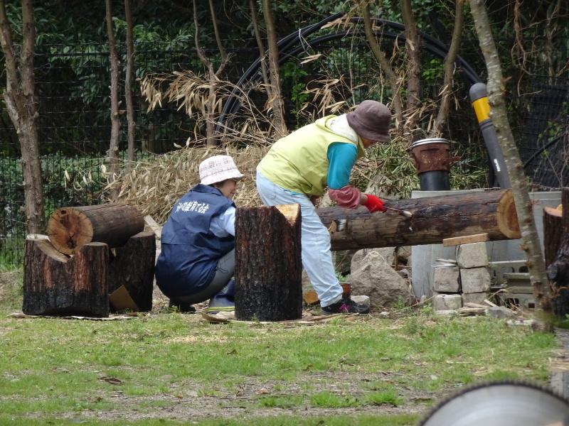 ササユリの道に手すりを取り付けました in うみべの森_c0108460_22104243.jpg