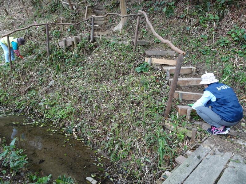 ササユリの道に手すりを取り付けました in うみべの森_c0108460_22240997.jpg