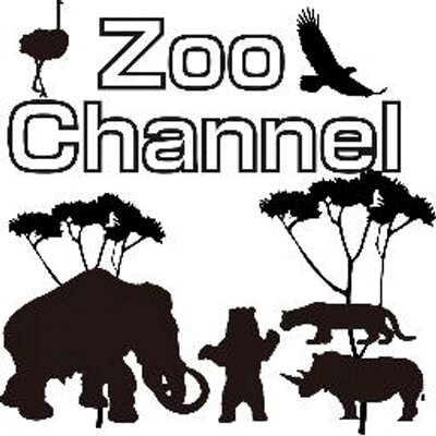 Zoochannel んの巻_f0236990_4201542.png