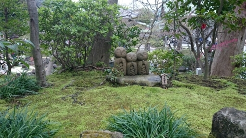 鎌倉散策2016/4 自転車借りて長谷寺~大仏_e0076995_17443318.jpg