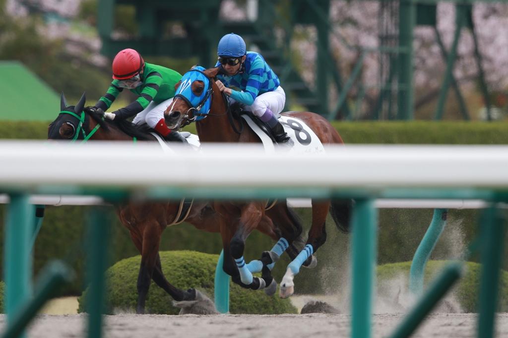 2016年4月3日 大阪杯(GⅡ)_f0204898_23281127.jpg
