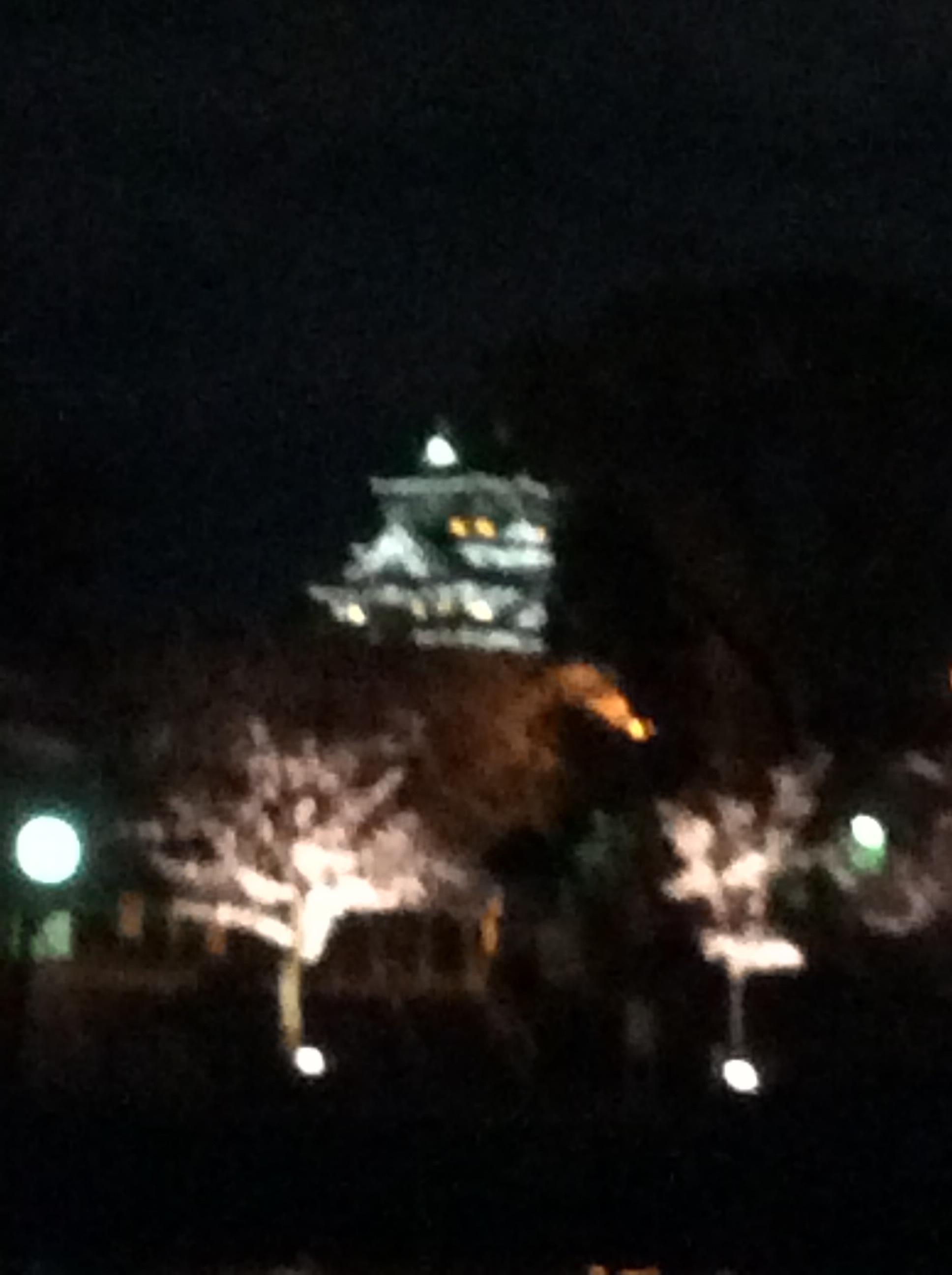 初めての夜桜クルージング。4月は桜・・・_c0215031_22100663.jpg