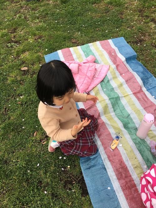 桜の季節_c0201749_15532067.jpg