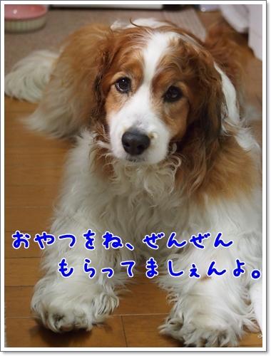 d0013149_00541652.jpg
