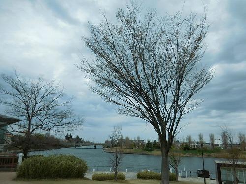 富山環水公園へ移動_c0327752_16435223.jpg