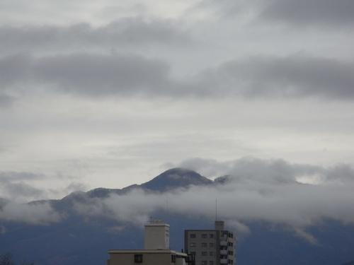~春の日常着に~ 「JAPAN BLUE JEANS」がいいよ! 編_c0177259_23352148.jpg