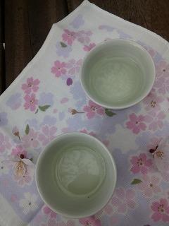 OFFその1   風景として惹かれる桜 半蔵濠~千鳥が淵_a0165160_13503999.jpg