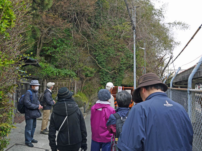花冷えの中、六国見山のシンボルツリー『夫婦桜』探訪4・2_c0014967_12212725.jpg