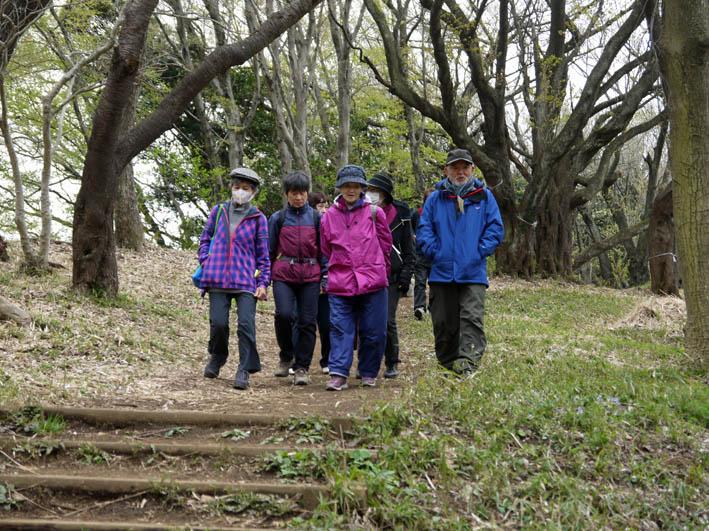 花冷えの中、六国見山のシンボルツリー『夫婦桜』探訪4・2_c0014967_12224410.jpg