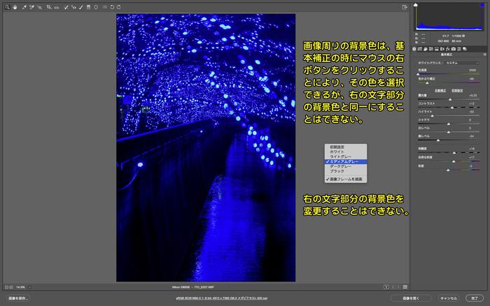 097 v9.5より背景色が変更になったこと_c0288212_22405699.jpg