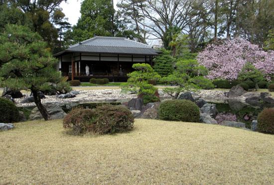 16桜だより34 二条城_e0048413_20473836.jpg