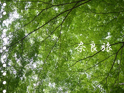c0229721_15250784.jpg