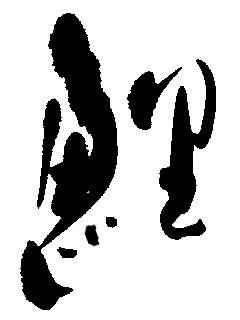 b0075826_19544676.jpeg
