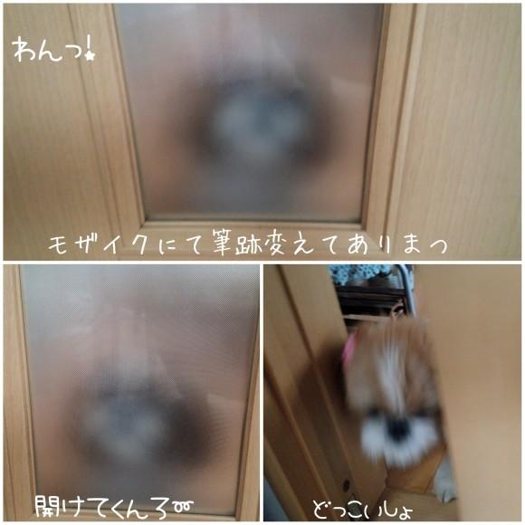 b0306158_18490651.jpg
