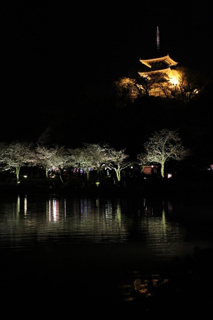 三渓園の夜桜_c0310571_19443917.jpg