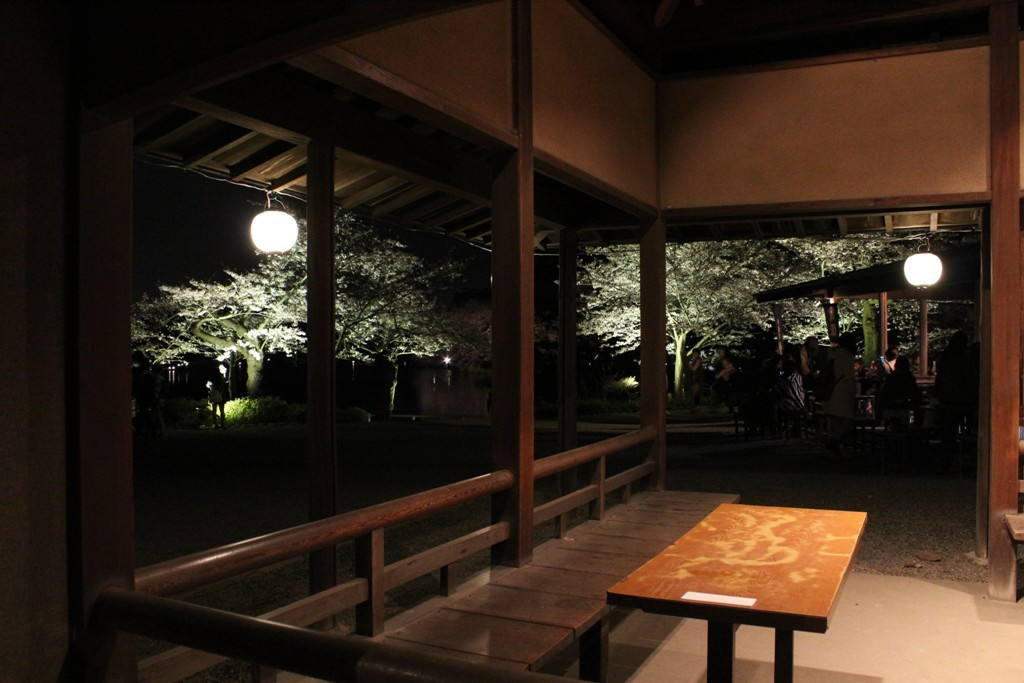 三渓園の夜桜_c0310571_19444851.jpg