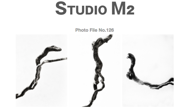 STUDIO M2 PhotoFile No.126「Dancing」_a0002672_14201916.jpg
