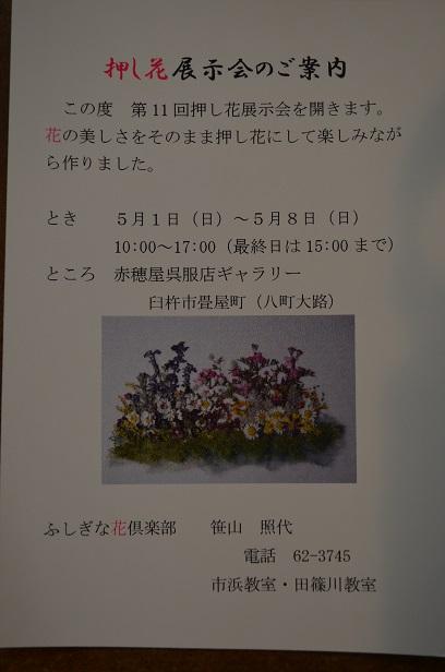 押し花展示会のご案内!_d0230676_1728072.jpg