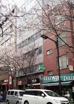 今年も!オフィス街パン屋とお花見ランチ_e0197587_7491054.jpg