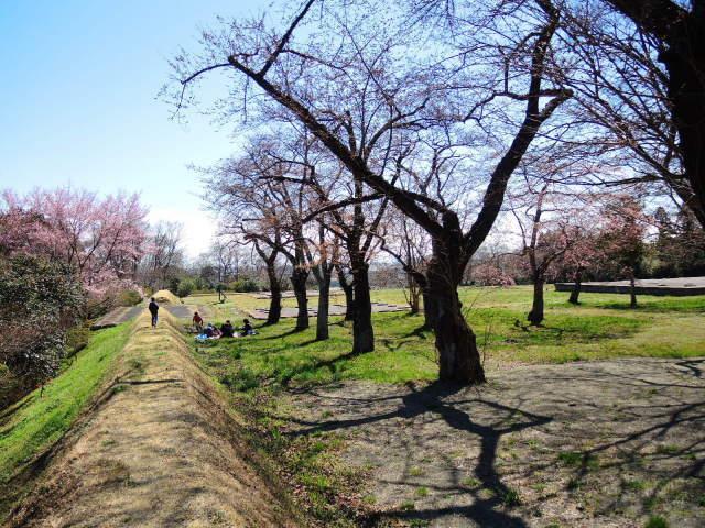 史跡多賀城をぐるっと一周_f0100593_16125048.jpg