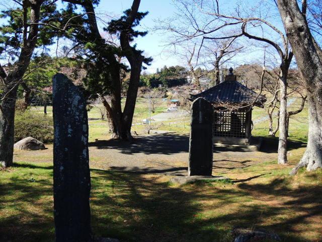 史跡多賀城をぐるっと一周_f0100593_16132304.jpg