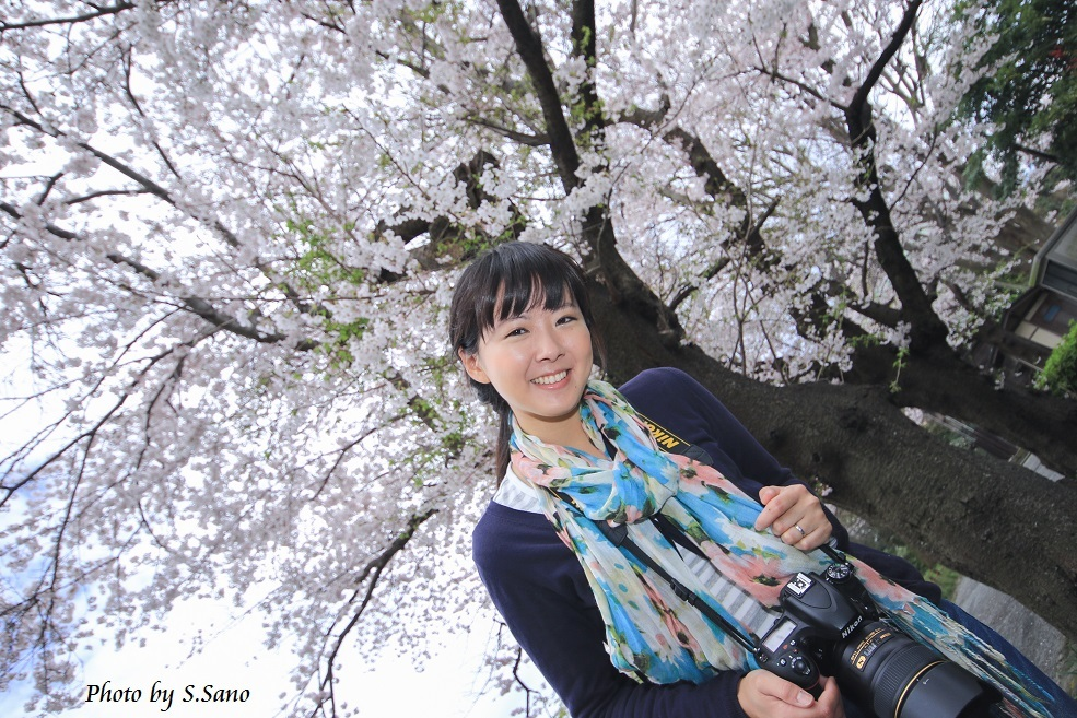 春の称名寺(2016年4月)_b0348205_00001823.jpg