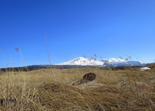 加速し始めた~3  鳥海山麓 ・冬師(トオシ)湿原 その2_a0214206_15272901.jpg