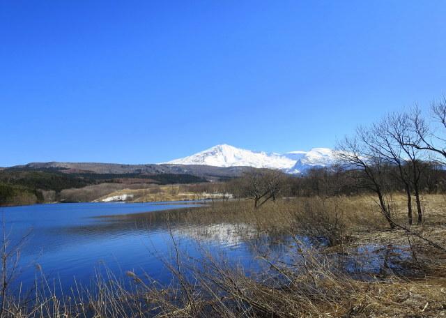 加速し始めた~3  鳥海山麓 ・冬師(トオシ)湿原 その2_a0214206_15392226.jpg