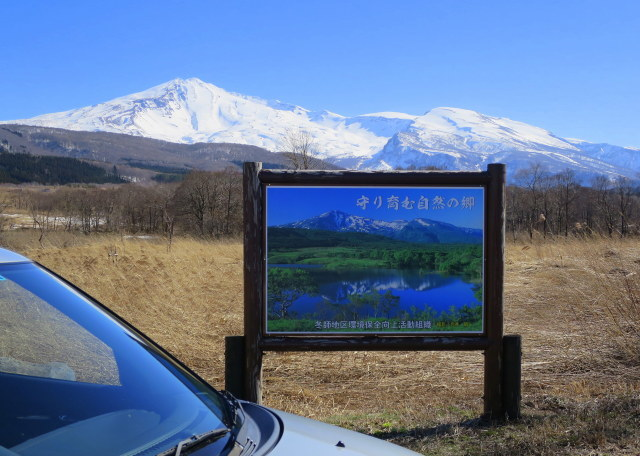 加速し始めた~3  鳥海山麓 ・冬師(トオシ)湿原 その2_a0214206_15534268.jpg