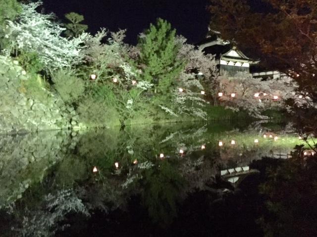 お城まつり・・・夜桜編_a0326106_211126.jpg