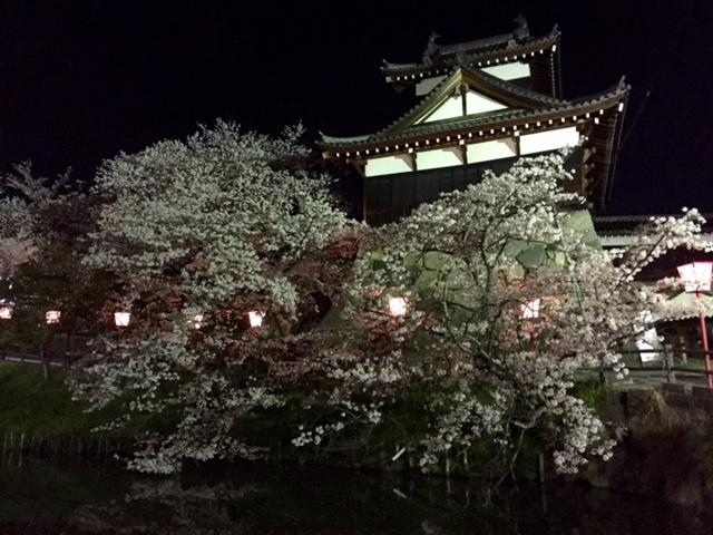 お城まつり・・・夜桜編_a0326106_211746.jpg