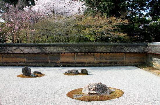 16 桜だより38 龍安寺_e0048413_2124699.jpg
