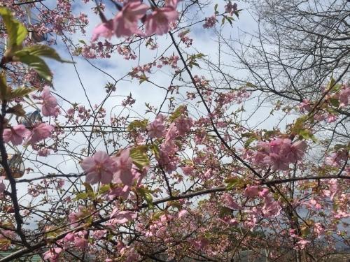 春休みの思い出♪_a0126418_15052483.jpg