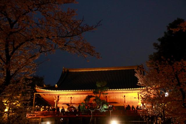 【上野恩賜公園】お花見遠足 part 4_f0348831_18024676.jpg